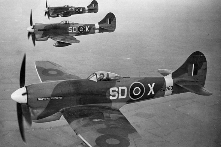"English fighter Hawker ""tempest"" Mk V 501 squadron RAF in flight, Jul 1944"