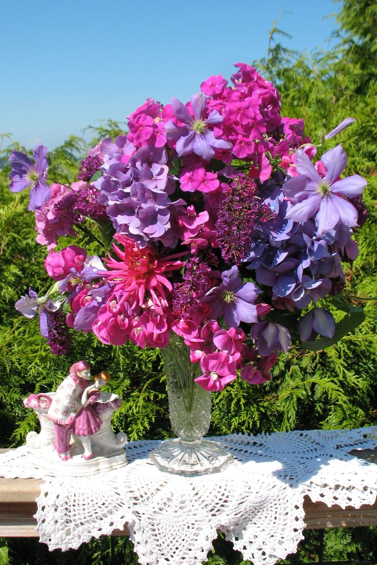 30 Best Images About Phlox Bouquet On Pinterest Sweet
