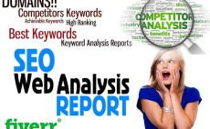 provide competitor analysis and full SEO report in 24hour
