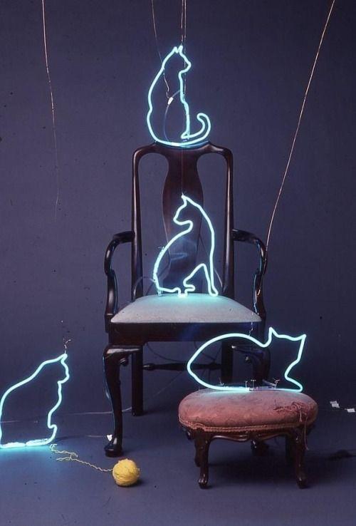 neon de gatinhos                                                                                                                                                                                 Mais