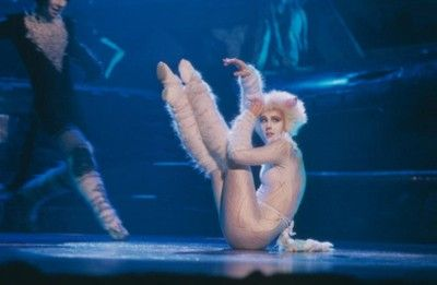 "Cats (stylized as CATS) is a musical composed by Andrew Lloyd Webber, based on Old Possum's Book of Practical Cats by T. S. Eliot. The musical tells the story of a tribe of cats called the Jellicles and the night they make what is known as ""the Jellicle choice"" and decide which cat will ascend to the Heaviside Layer and come back to a new life. Cats also introduced the song standard ""Memory""."
