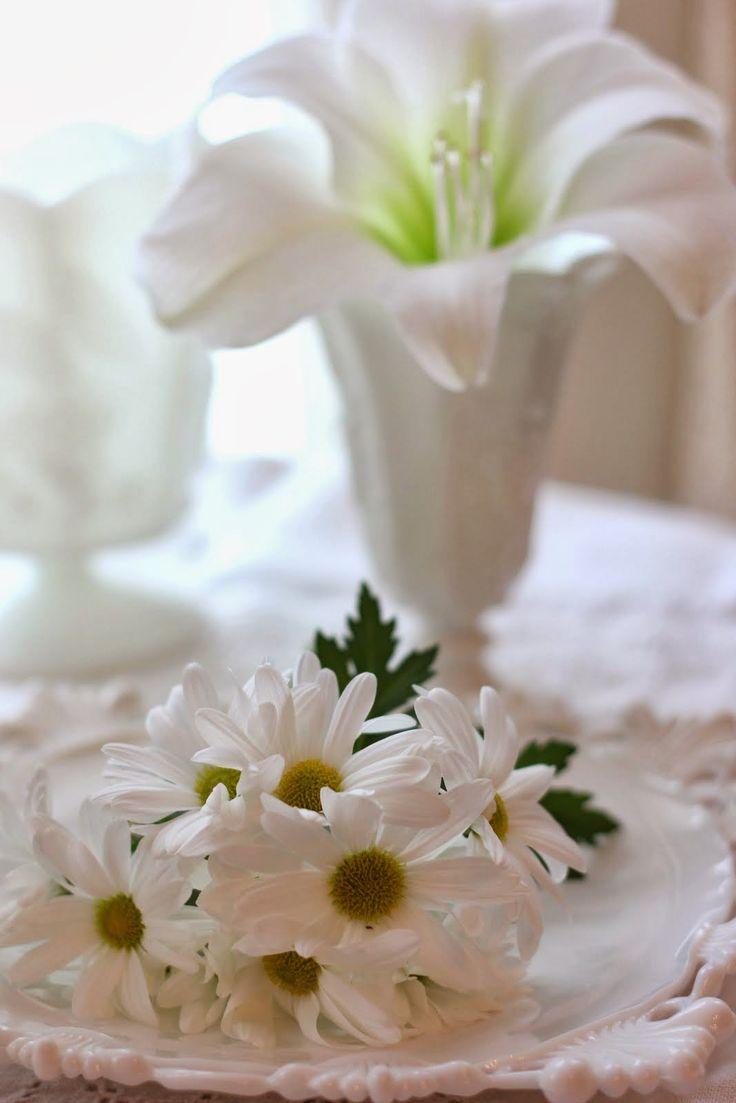 Milk Glass White ~ Carolyn Aiken, Aiken House U0026 Gardens ~ Westmoreland  Milkglass