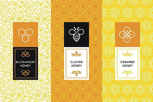 Vector logo and packaging design templates in trendy vector art illustration