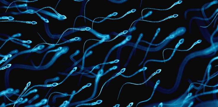 Infertility in Men could indicate serious health problems later in life