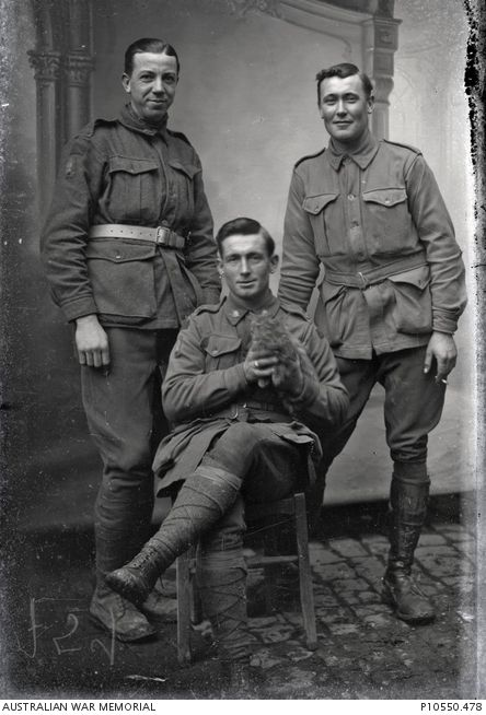 Group portrait of three unidentified Australian soldiers, possibly from a Light Trench Mortar battery. The soldier seated in the front holds a kitten. France: Picardie, Somme, Vignacourt. c 1916-1918