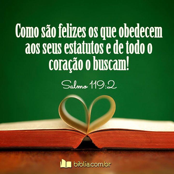 Como são felizes os que obedecem aos seus estatutos e de todo o coração o buscam. #Buscai #Busque #Jesus #Biblia