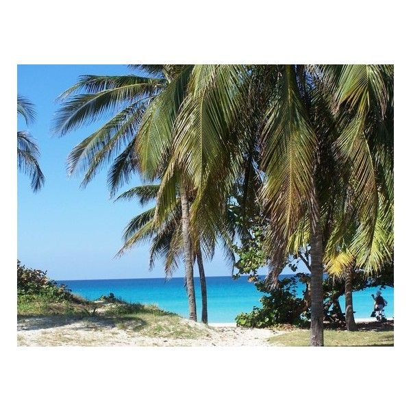 VRA Beach Picture of Varadero Beach, Varadero ❤ liked on Polyvore featuring beach and backgrounds