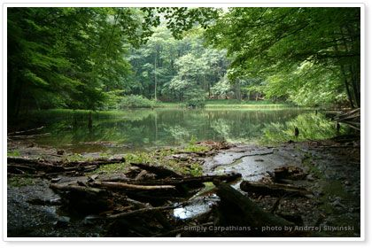 Duszatynskie Lakes in the Bieszczady Mountains #Poland.  www.simplycarpathians.com