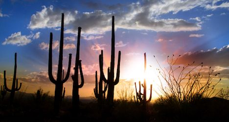 100 Must-Read Books about The Southwest