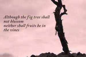 Though the figtree does not blossom...