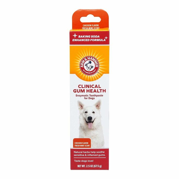 Best toothpaste for dogs including tips for canine oral