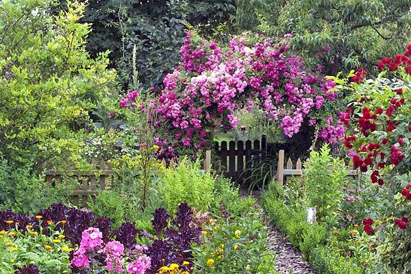 THIS is an entrance to a Potager! The roses would attract pollinators like nobody's business :)