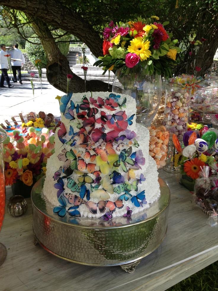 Mariposas de colores smapenzi.com penzi weddings bodas san miguel allende mexico