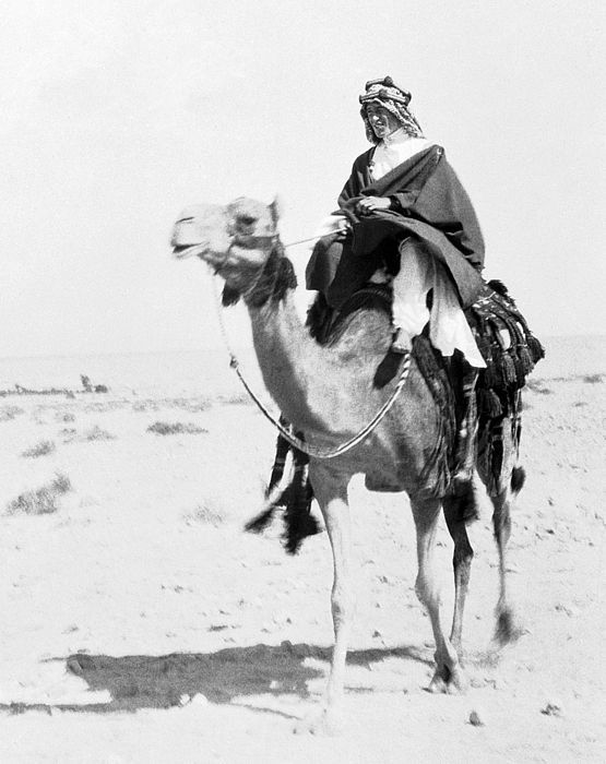The iconic image that would become a trademark: Lawrence mounted on a camel, photographed at Akaba, 1917-18. Photo & caption featured in T.E. Lawrence in War and Peace: The Military Writings of...