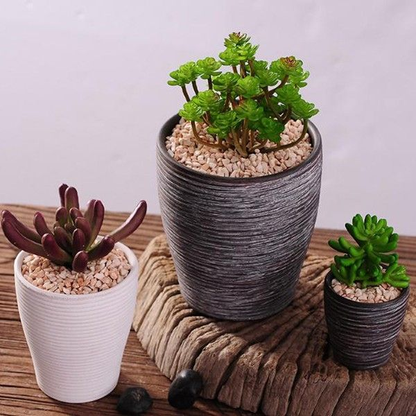 New Style Succulents Pots Wholesale Indoor Flower Pot Table Pot Ceramic Planter Usage Conditio Indoor Flower Pots Ceramic Succulent Planter Ceramic Flower Pots