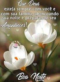 Que Deus esteja sempre com você e com sua família, abençoando sua noite e preparando seu Amanhecer! Boa Noite