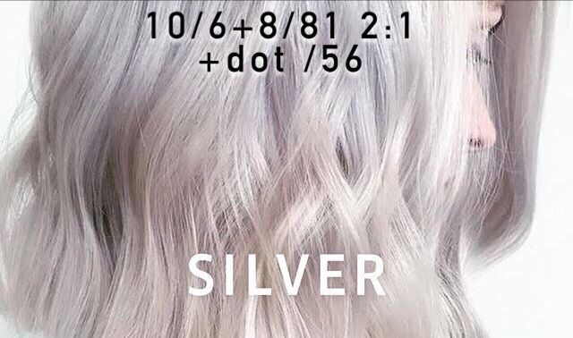 Icy Platinum Blonde With Silver Tone Formula Blonde Formula