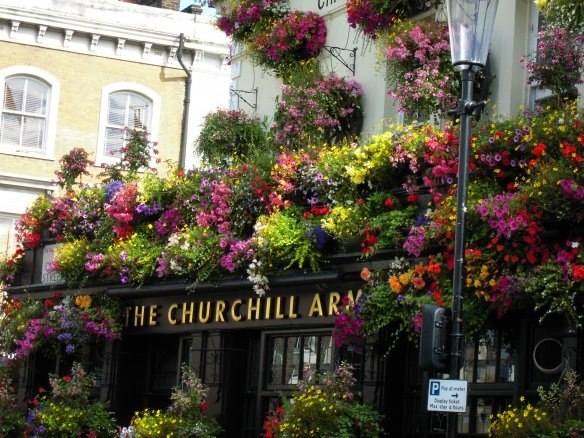 141 Best What S Pog To A Restaurant Pub Cafe Images On