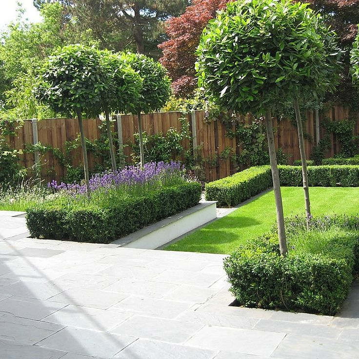 Slate Terrace Contemporary Garden