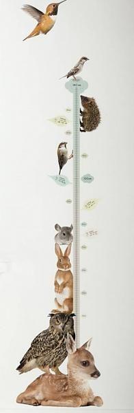 KEK Amsterdam Muursticker groeimeter, forestfriends#2