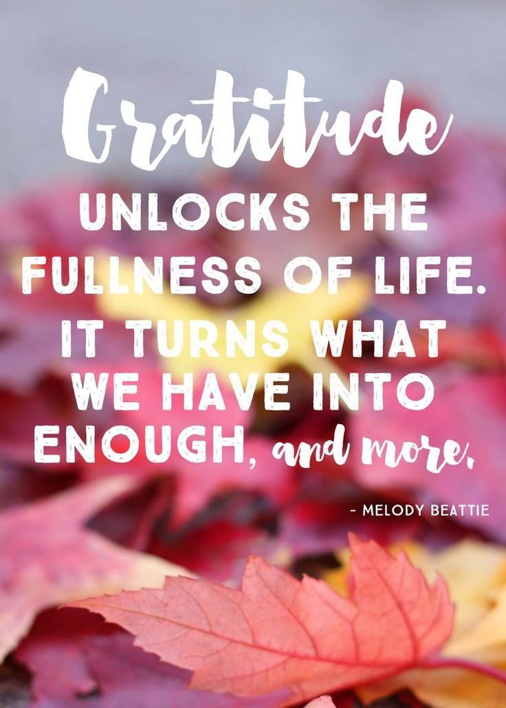 Best 25+ Attitude Of Gratitude Ideas On Pinterest