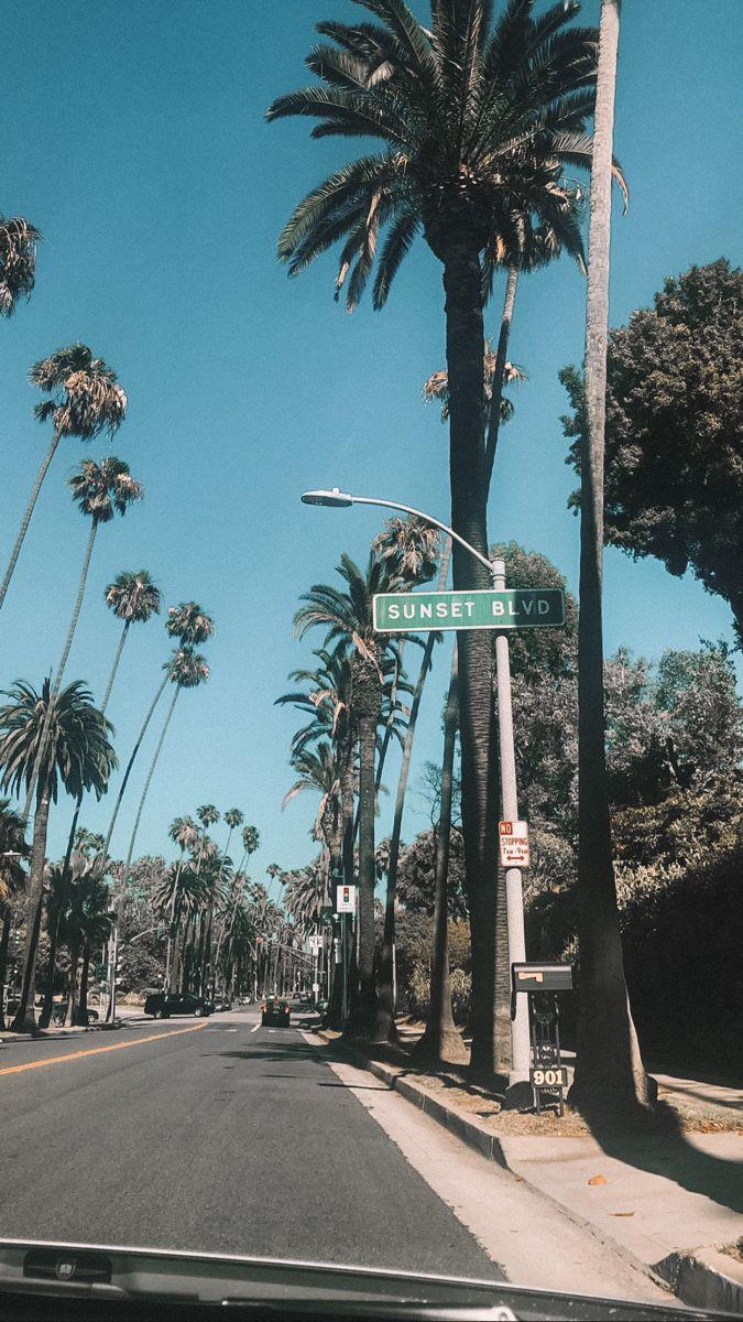Los Angeles Background California Los Angles