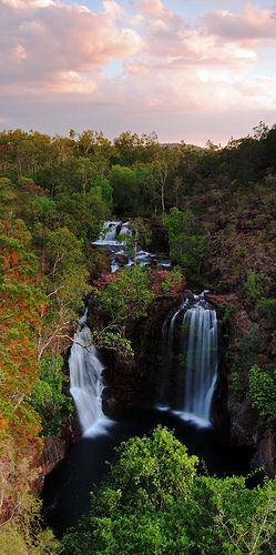 Florence Falls, Litchfield National Park, Australia :) Swam here today ! March 20, 2014