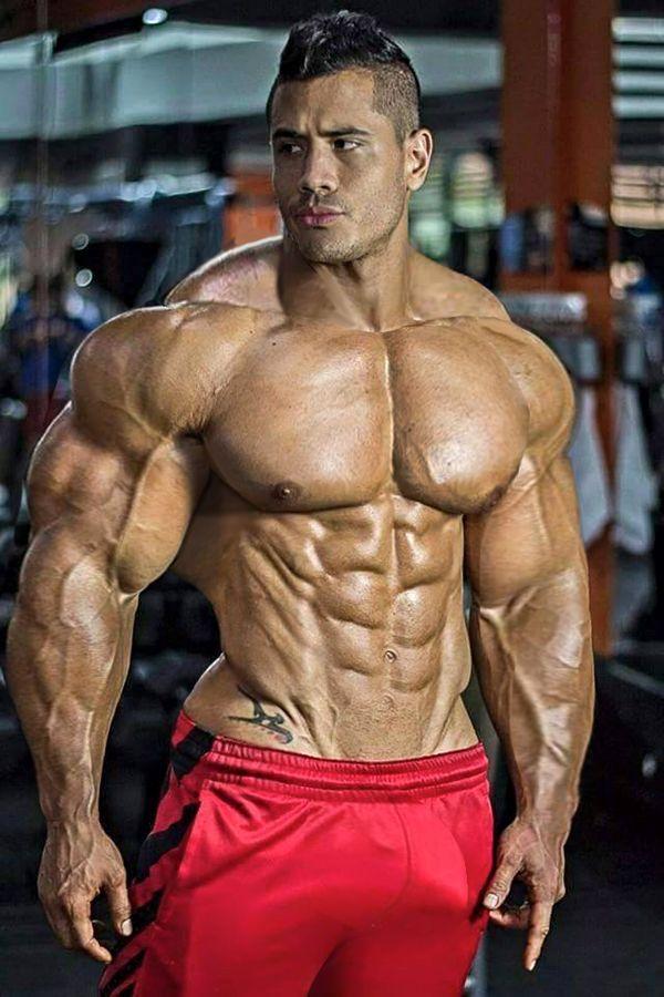 tit muscles
