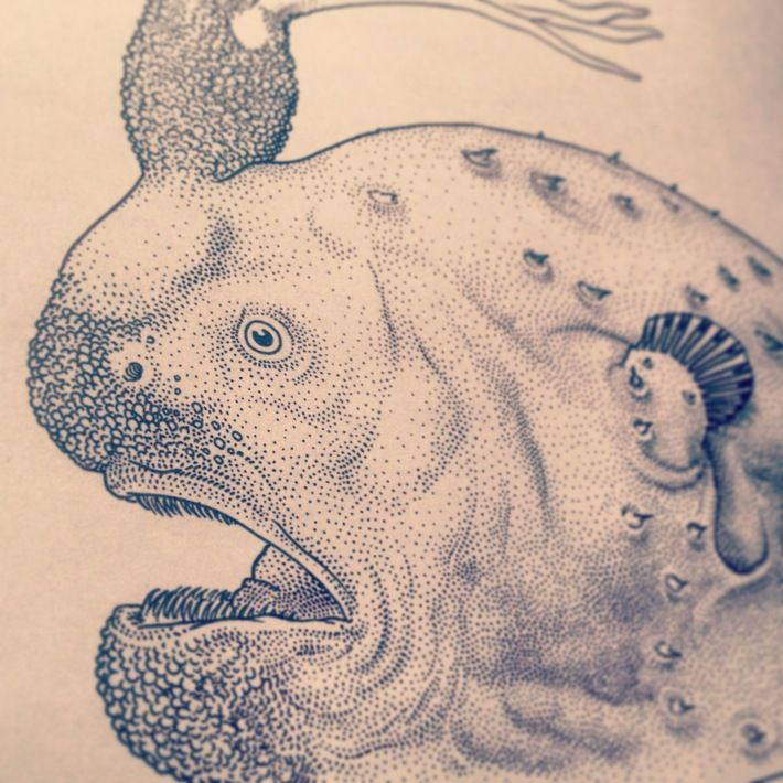 Deep sea anglerfish book by Jared Muralt, via Behance