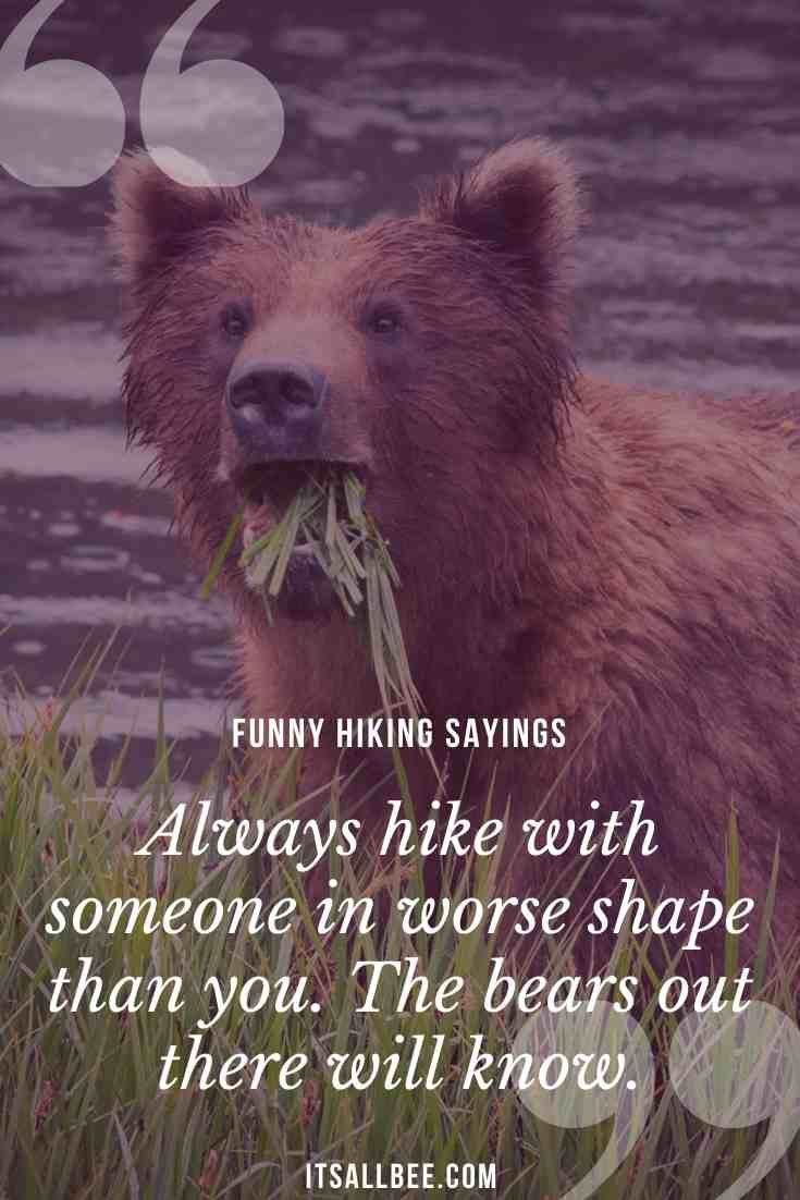 31 Funny Hiking Quotes Sayings For Nature Lovers Itsallbee Travel Blog In 2020 Hiking Quotes Funny Funny Hiking Hiking Quotes