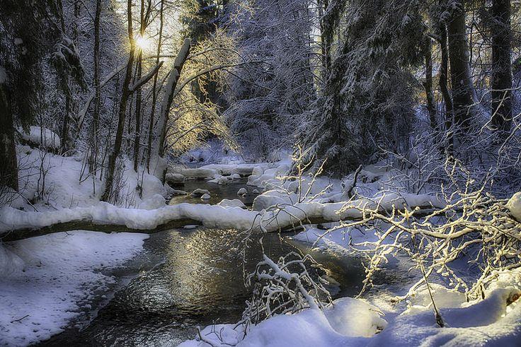 Ellingsrudelva - I nydelig vintersol