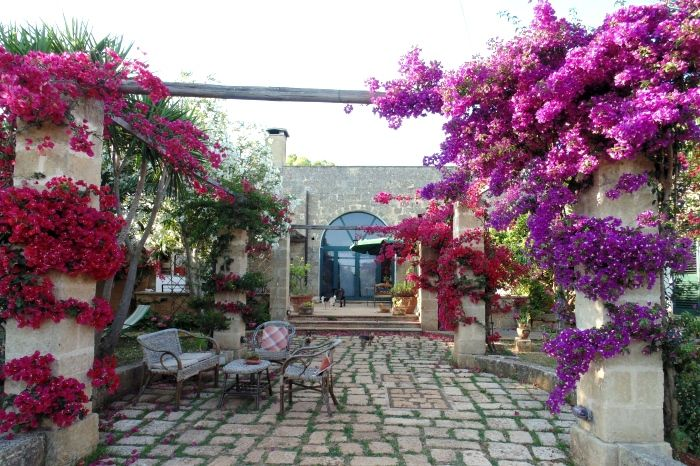 Bauernhof Masseria Nova Isola Verde Alessano (Lecce) - Apulien