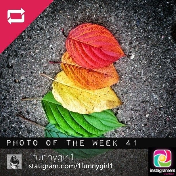 IgersGdansk Photo of the Week 41. Congratulations @dar thompson. Igers keep tagging your photos #igersgdansk for your chance to be IgersGdans...