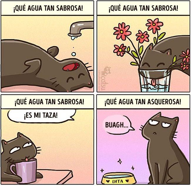Cómic gato en casa bebiendo agua