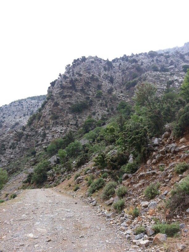 Country road, mount Idi, Kreta