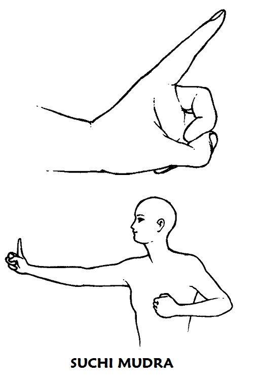 #suchi #mudra Primero cerrar los puñños y coloarlos ante el pecho. A continuación, al inspirar, extender el brazo derecho hacia la derecha levantando el índice. Al mismo tiempo, extender el brazo izquierdo hacia la izquierda. Mantener esta postura durante 6 movimientos respiratorios y volver a la posición de partida. Hacer lo mismo hacia el otro lado. Repetir 6 veces en cada lado.