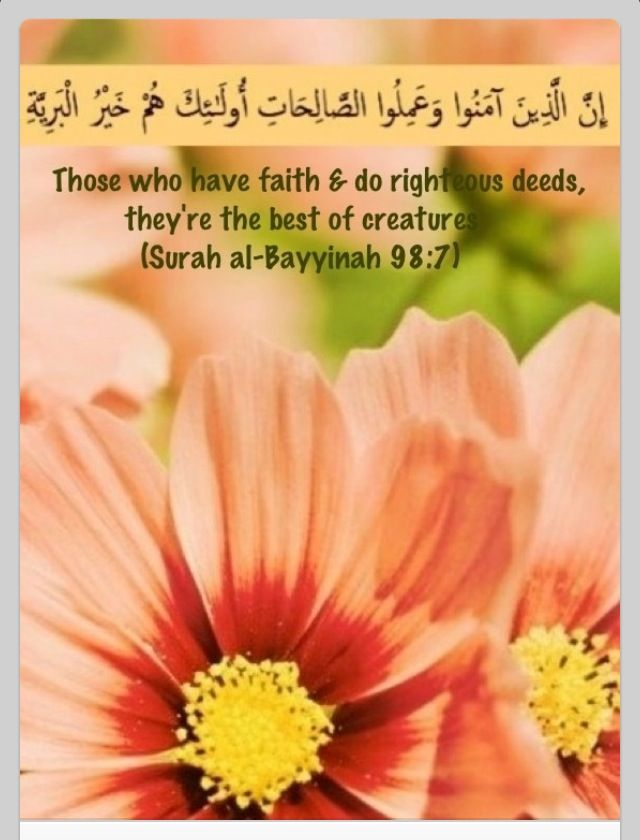 That's the beauty and veracity of Islam. Faith alone means nothing... if you aren't proving it with your actions !!