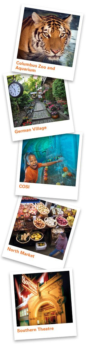 cosi themes and techniques List the themes and contexts in cosi  list the literary devices and techniques in  cosi  some key quotes to go with the themes of illusion and reality in cosi.