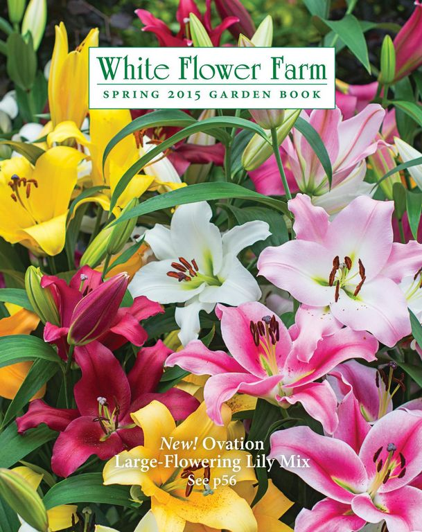 70 Free Seed and Plant Catalogs: White Flower Farm Bulb and Plant Catalog