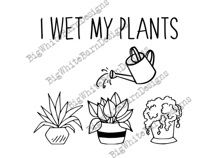 Park Art My WordPress Blog_I Wet My Plants Mug