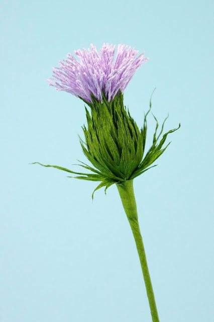 Crepe paper thistle, emblem flower of Scotland. This piece was painstakingly handcrafted by Papetal using the finest Italian crepe paper.