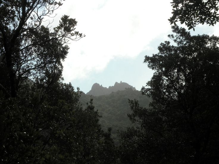 Escursione a Bruncu S'Eremigu Mannu - Escursioni #Sardegna
