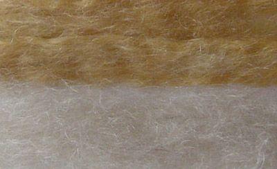 cassia on white hair