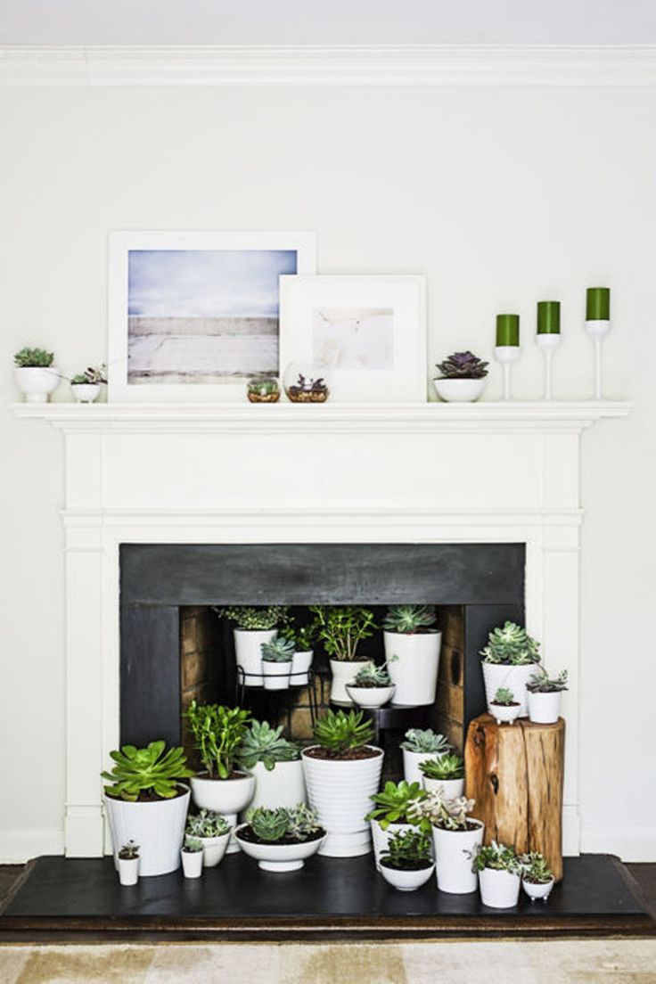 Nine creative ideas for an unused fireplace                                                                                                                                                                                 More