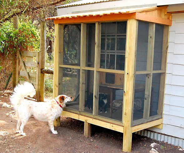 Pet Friendly Flooring Options For Cat And Dog Owners: 25+ Best Ideas About Cat House Plans On Pinterest