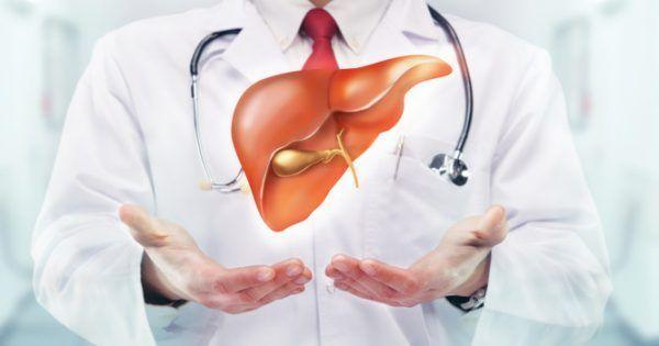 Υγεία - Το συκώτι εργάζεται διαρκώς και σκληρά, φιλτράροντας το αίμα, παράγοντας χολή απαραίτητη για την διαδικασία της πέψης και ρυθμίζοντας το επίπεδο σακχάρου σ