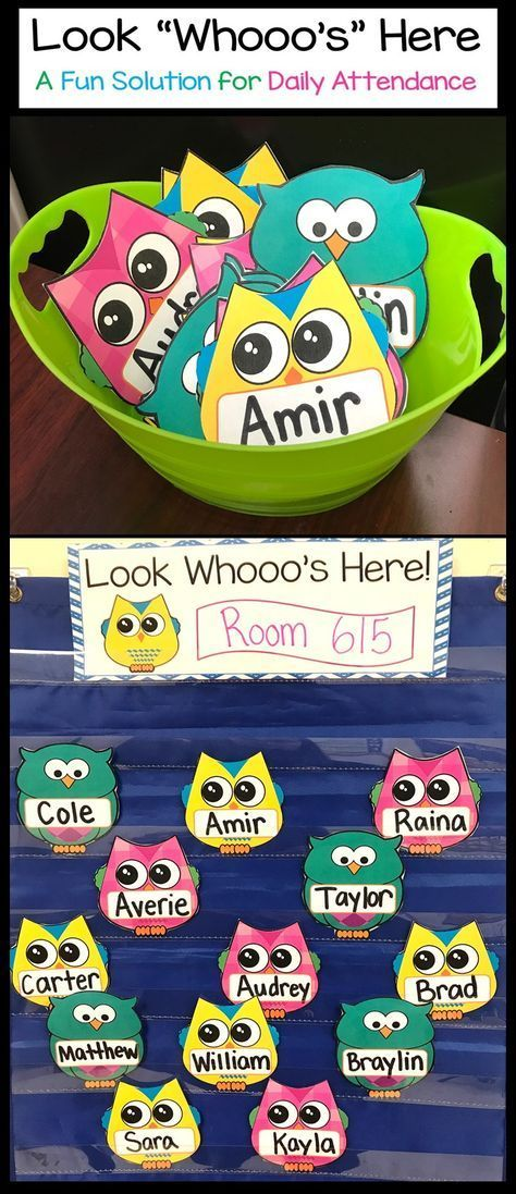 Owl Theme Attendance Display for pocket chart and magnetic boards. | Classroom management | back to school | Look Who's Here | Preschool | Kindergarten | First Grade
