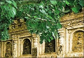 Bodh Gaya - Place of Enlightenment