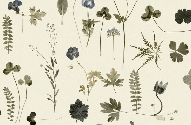 tienda online telas & papel | Papel pintado botanica azules