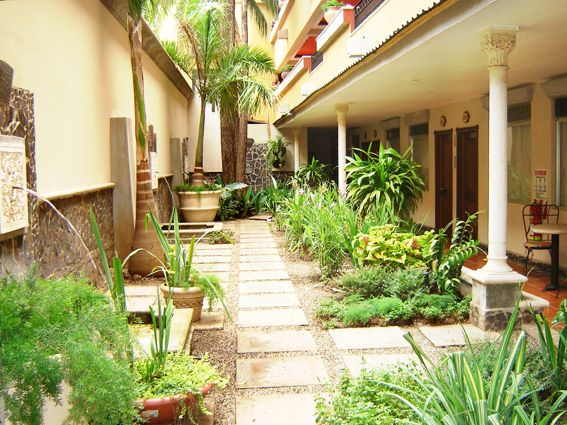 google image result for httpwwwliberiacostaricacomhotels small tropical gardenstropical garden designtropical